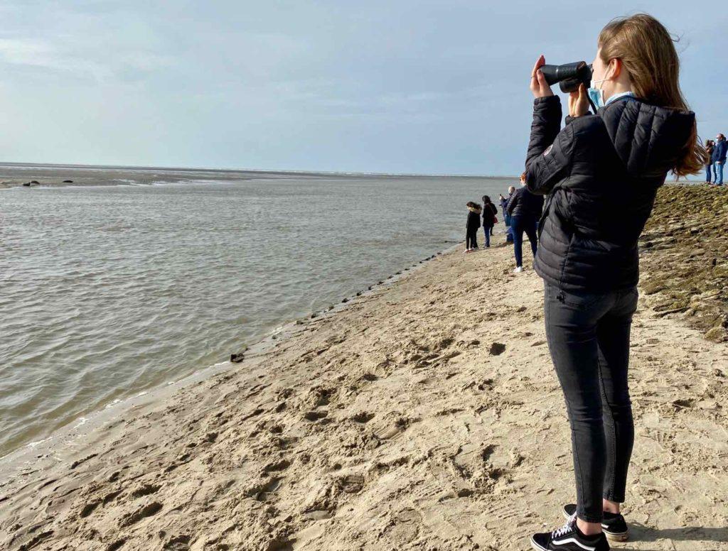 Fille-observant-Phoques-baie-d-Authie-