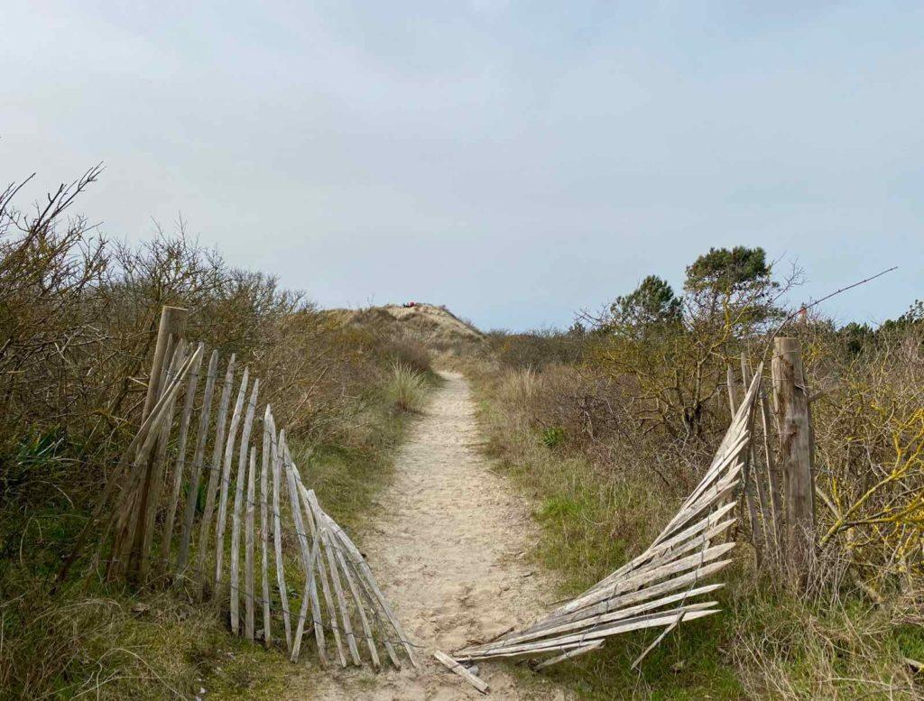 Sentier-dunaire-de-la-baie-d-Authie- chemin