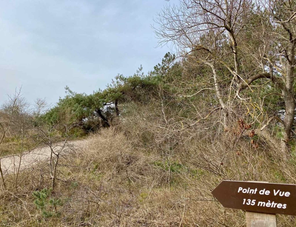 Sentier-dunaire-de-la-baie-d-Authie-panneau-point-de-vue