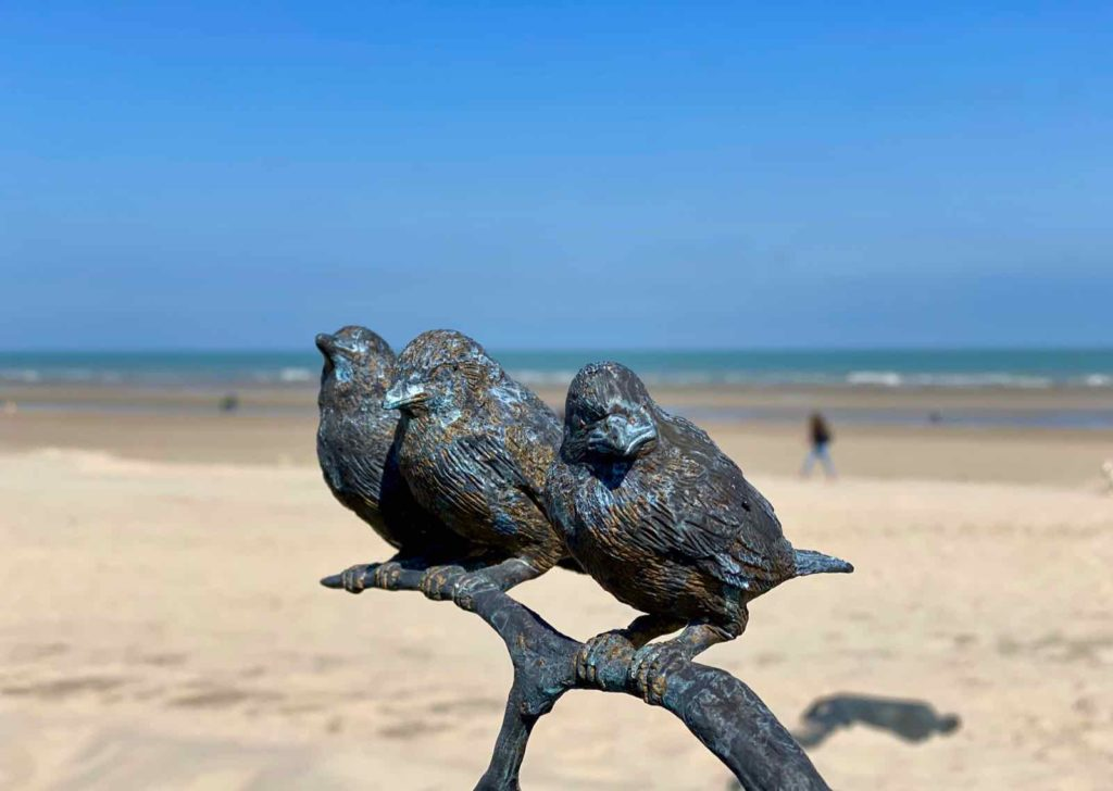 Festival-Beaufort-La-Panne-Laure-Prouvost-Touching-To-Sea-You-Through-Our-Extremities-oiseaux-gros-plan