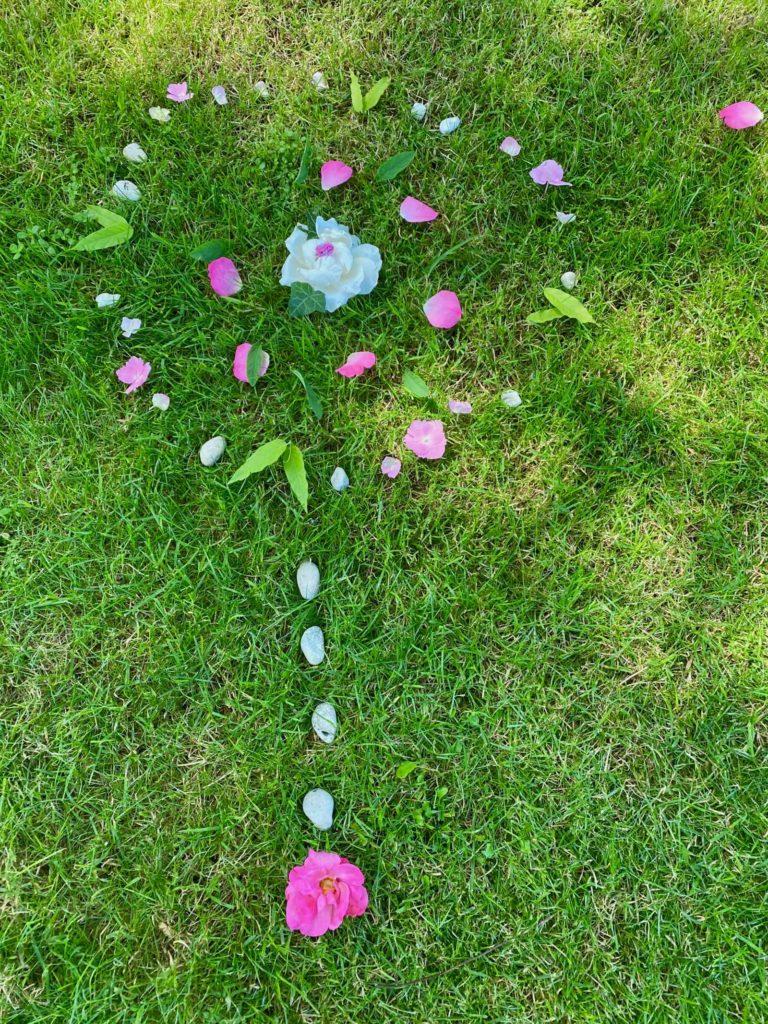 Fleur-sur-herbe