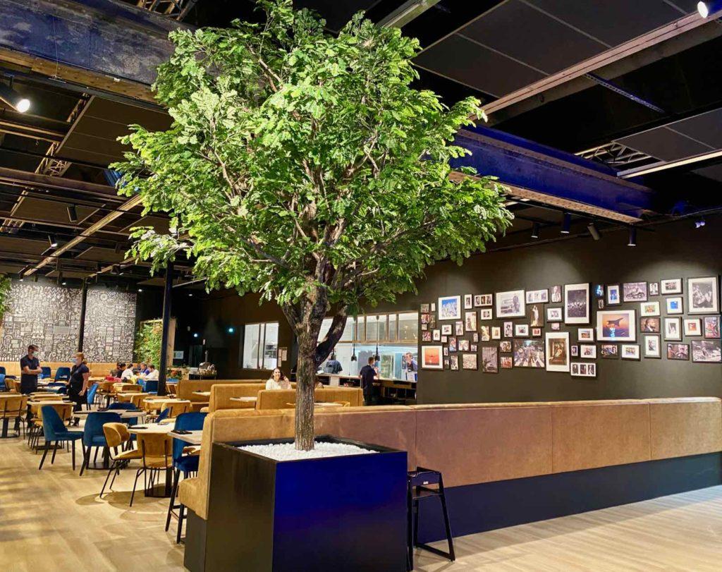 Hall-U-Need-Saint-Andre-salle-mur-noir-arbre-vert