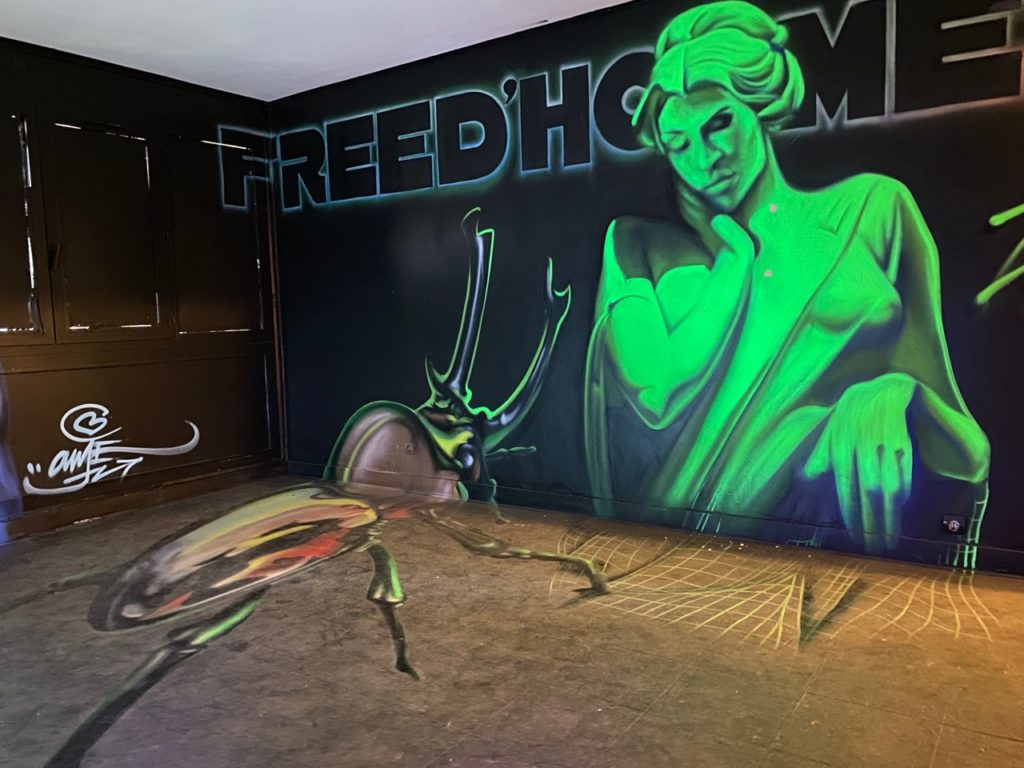 Transition-Abbeville-art-urbain-Freed-Home