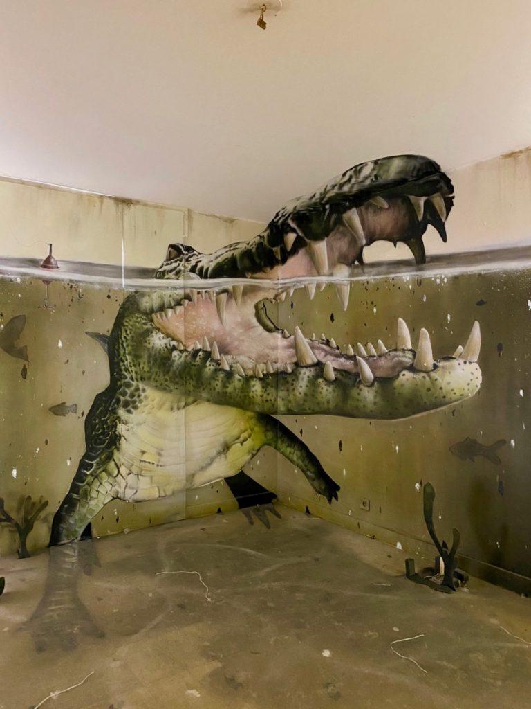 Transition-Abbeville-art-urbain-crocodile-dans-eau