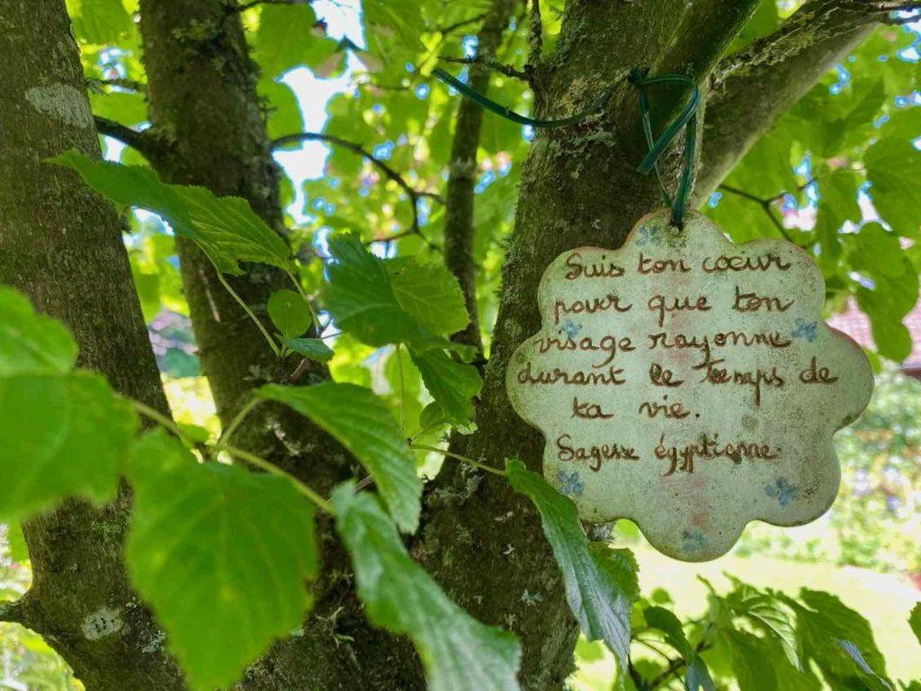 Le-Jardin-des-Lianes-Cheriennes-belle-phrase-quatre