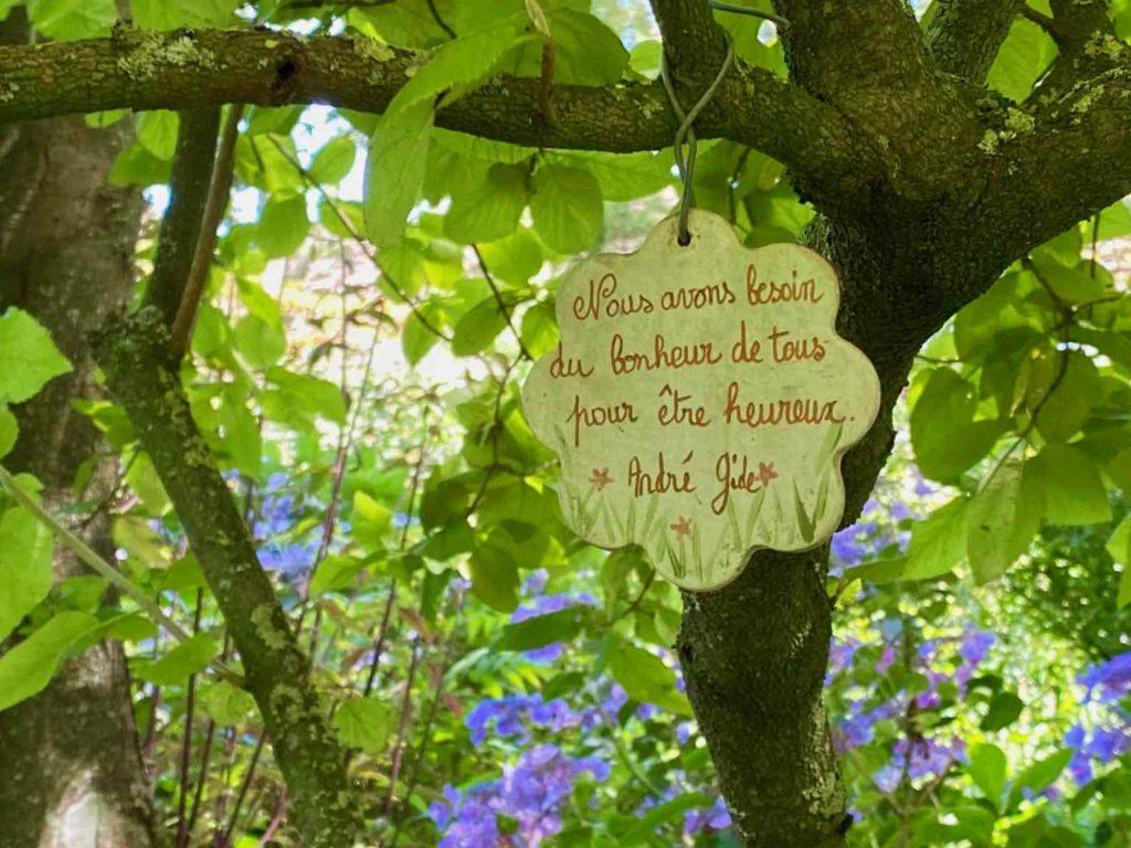 Le-Jardin-des-Lianes-Cheriennes-belle-phrase-un