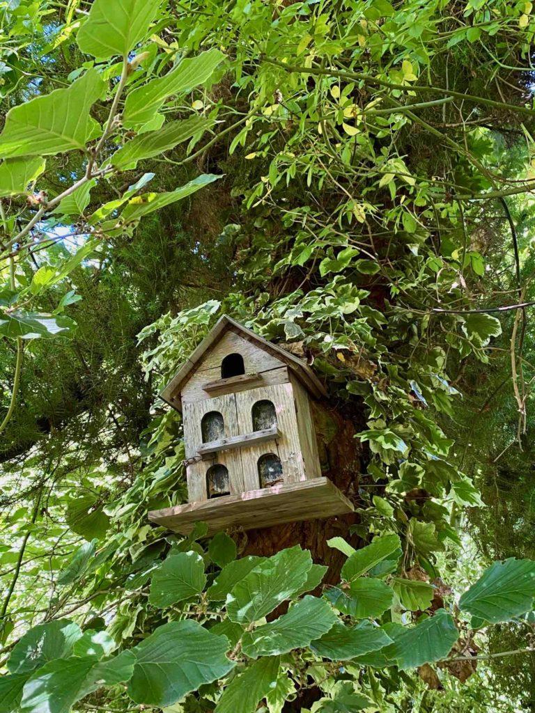 Le-Jardin-des-Lianes-Cheriennes-maison-a-oiseaux-deux