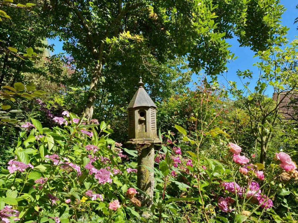 Le-Jardin-des-Lianes-Cheriennes-maison-a-oiseaux-sept