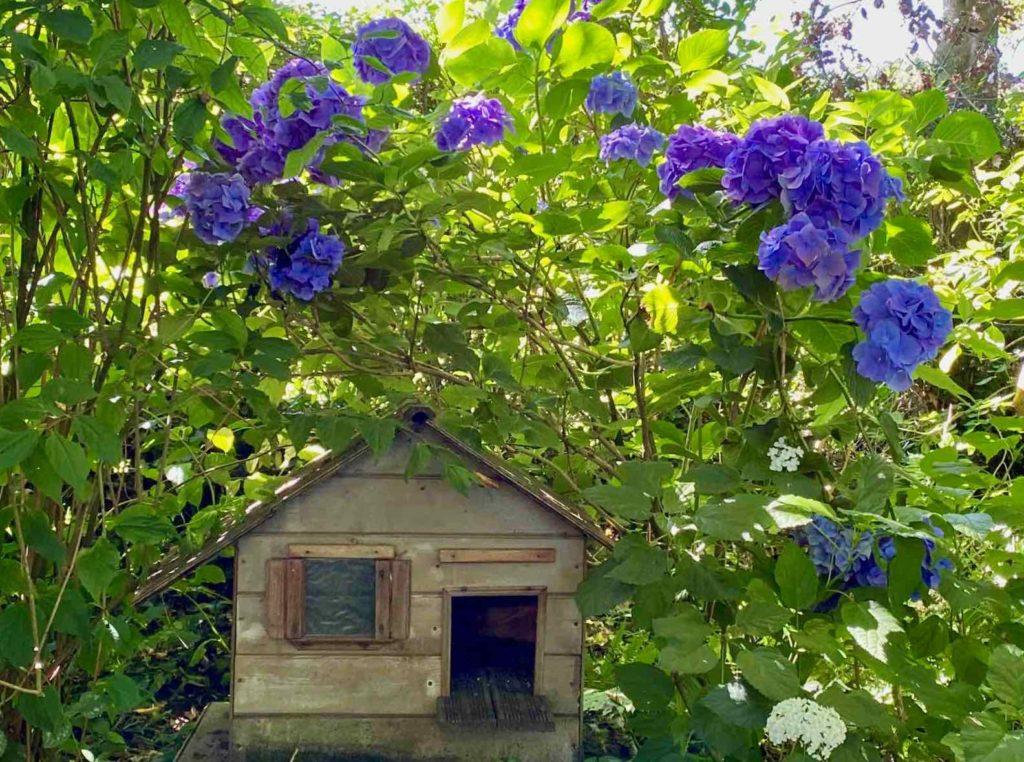 Le-Jardin-des-Lianes-Cheriennes-maison-a-oiseaux-trois