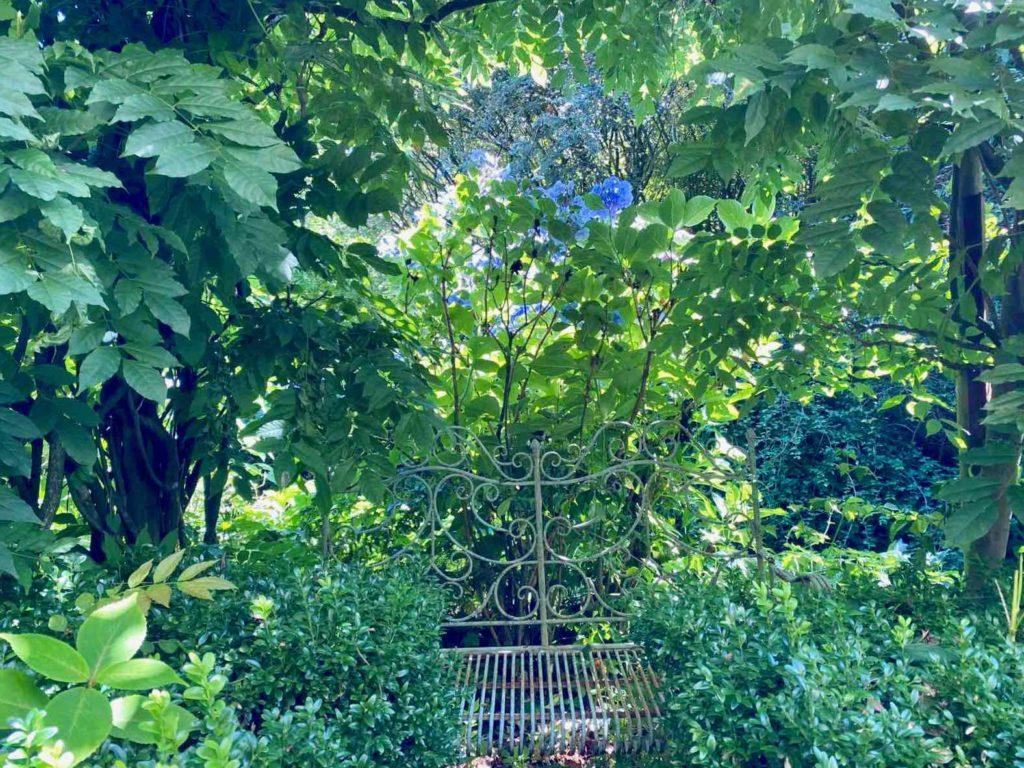 Le-Jardin-des-Lianes-Cheriennes-sieges-trois