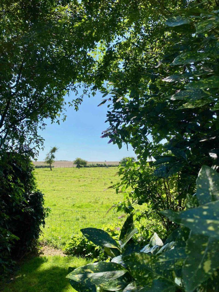 Le-Jardin-des-Lianes-Cheriennes-trouee