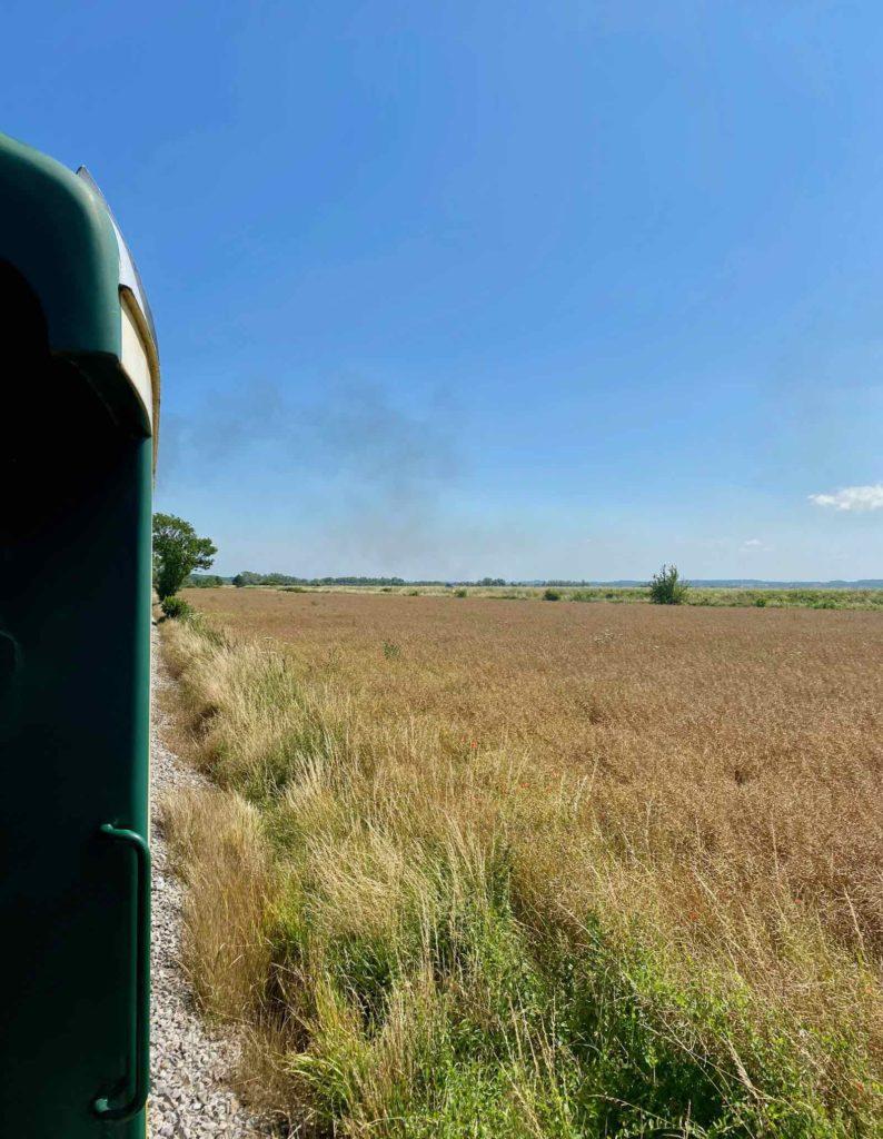 Chemin-de-fer-de-la-baie-de-Somme-train-dans-campagne
